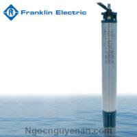 Động cơ chìm Franklin 6 inch 3 Pha